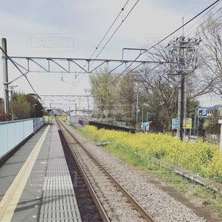 駅の景色の写真・画像素材[933712]
