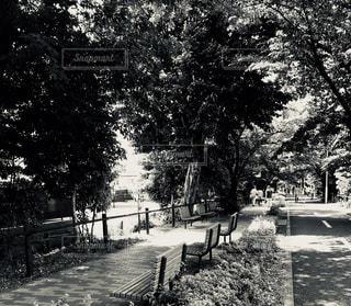 休憩場所の写真・画像素材[1207390]