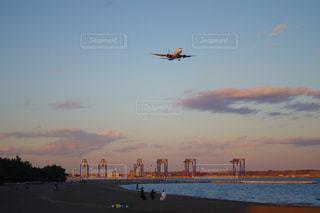 飛行機の写真・画像素材[888329]