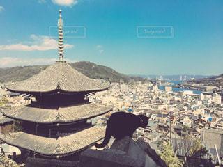 三重塔と黒猫の写真・画像素材[890865]
