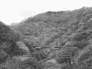 廃線の足跡の写真・画像素材[897150]