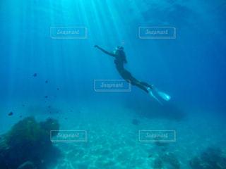 青い水の中泳いでいる間空気を通って飛んで女の写真・画像素材[897213]