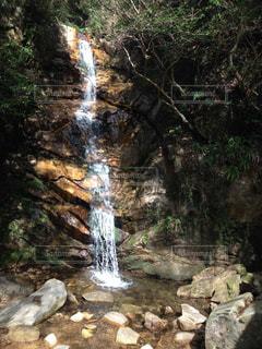 森の中の滝の写真・画像素材[889964]