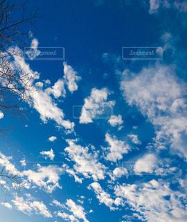 雪が降る前日の青空の写真・画像素材[1719237]