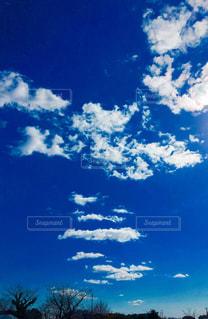 Y字型の雲発見の写真・画像素材[1775728]