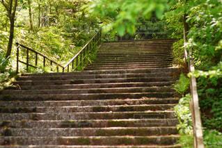 閑静な階段 - No.1207820