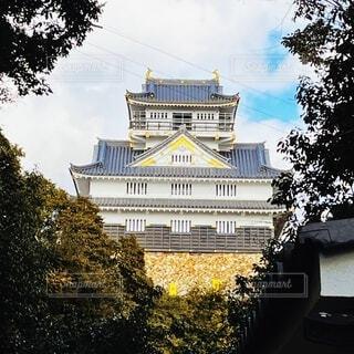 岐阜城の写真・画像素材[4925623]