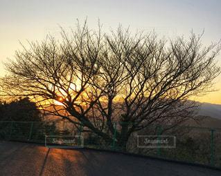 夕日の写真・画像素材[901268]