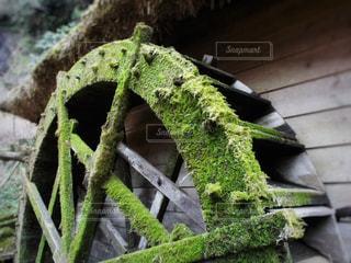苔の生えた水車 - No.925884
