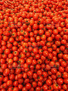 a lot of tomatosの写真・画像素材[931069]