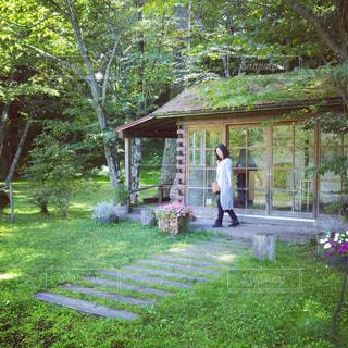庭とナチュラルハオの写真・画像素材[891350]