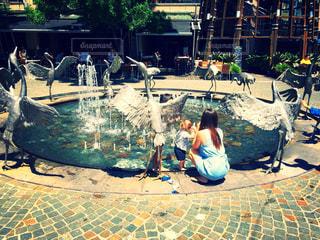 ダーリングハーバーの噴水の写真・画像素材[892769]