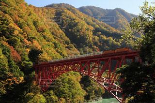 新山彦橋を渡る黒部峡谷鉄道の写真・画像素材[891613]