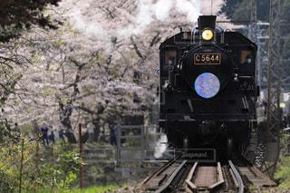 家山の桜とSL - No.1190469