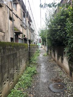 雨の日の路地裏の写真・画像素材[1527449]