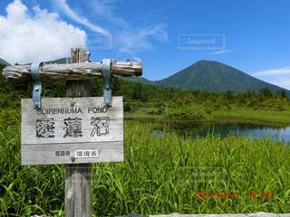 青森県の観光スポットの写真・画像素材[892147]