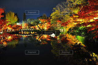 夜の街の景色の写真・画像素材[892444]