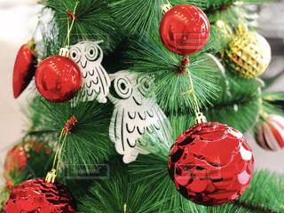 クリスマスツリー - No.911970