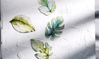 テーブルの上の花の花瓶の写真・画像素材[1654693]
