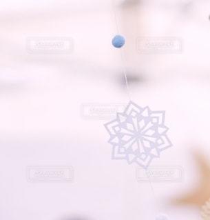 雪の華の写真・画像素材[2763131]