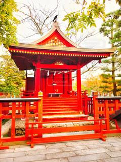 鶴岡八幡宮 境内の写真・画像素材[902372]