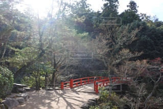 紅橋 - No.941813