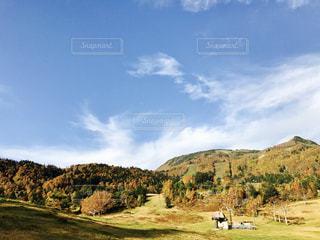 色づき始める山と青い空の写真・画像素材[893779]