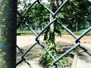 マレーシアの動物園にてフェンス - No.893800