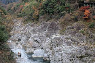 大歩危峡(徳島県三好市)の写真・画像素材[895248]