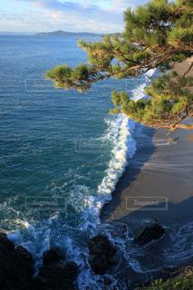竜王岬展望台からの景色(桂浜)の写真・画像素材[895549]