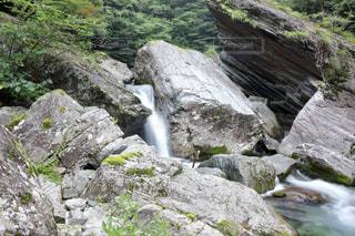 安居渓谷の渓流の写真・画像素材[899537]