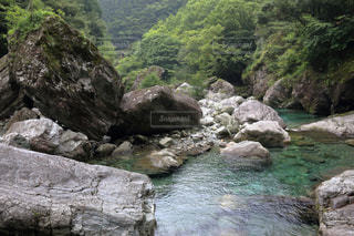 安居渓谷の写真・画像素材[899538]