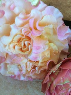 近くの花のアップの写真・画像素材[893927]