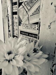 白い花の束 - No.1009159