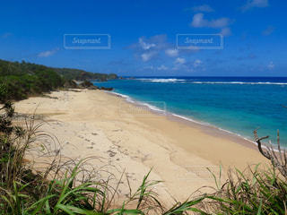 水の体の横にある砂浜のビーチの写真・画像素材[898457]