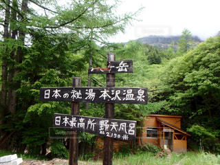 森の前にある看板の写真・画像素材[899555]