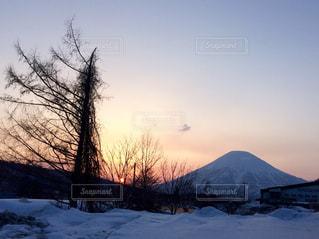 雪に覆われたフィールド - No.901250
