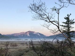 背景の山と木の写真・画像素材[1536075]