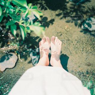 夏の匂いの写真・画像素材[997342]