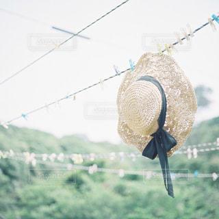 夏と帽子の写真・画像素材[2397503]