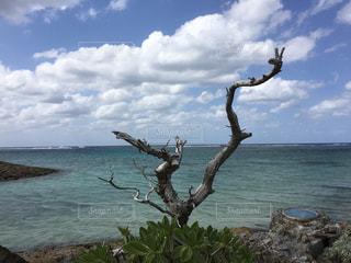 沖縄の海・シェラトンビーチ - No.897584