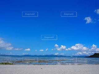 沖縄のドライブ途中の風景の写真・画像素材[964614]