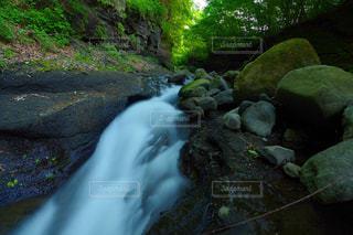 森の中の瀑布の写真・画像素材[897510]