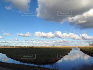 オランダの湿原の写真・画像素材[900178]