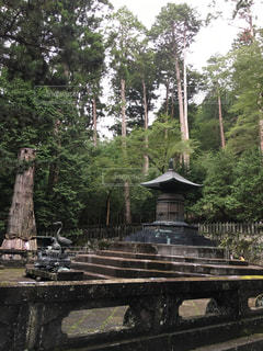 日光東照宮内、徳川家康の墓の写真・画像素材[898299]