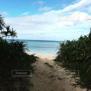石垣島のプライベートビーチの写真・画像素材[899354]