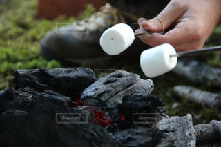 焼きマシュマロの写真・画像素材[1207113]