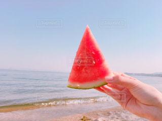 夏の写真・画像素材[909595]