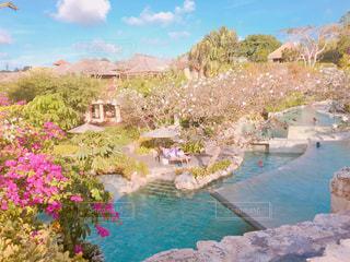 バリ島の写真・画像素材[1290909]
