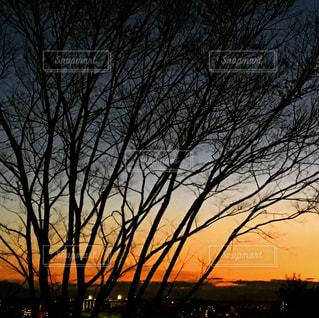 夕焼け空の写真・画像素材[915152]